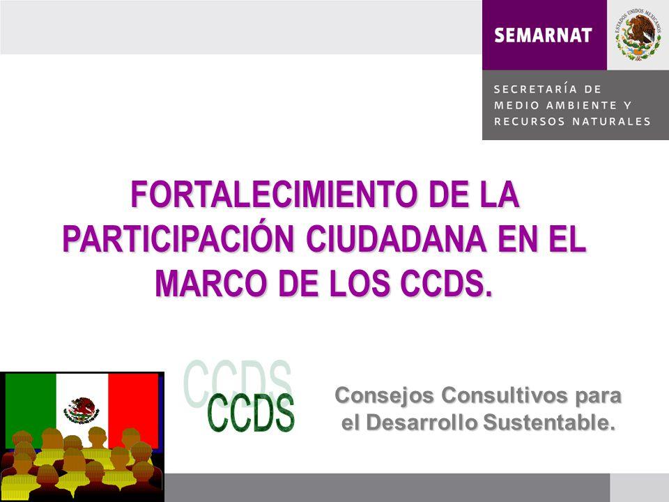 FORTALECIMIENTO DE LA PARTICIPACIÓN CIUDADANA EN EL MARCO DE LOS CCDS.