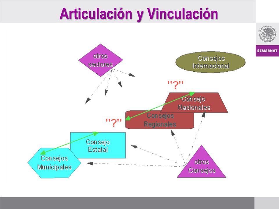Articulación y Vinculación