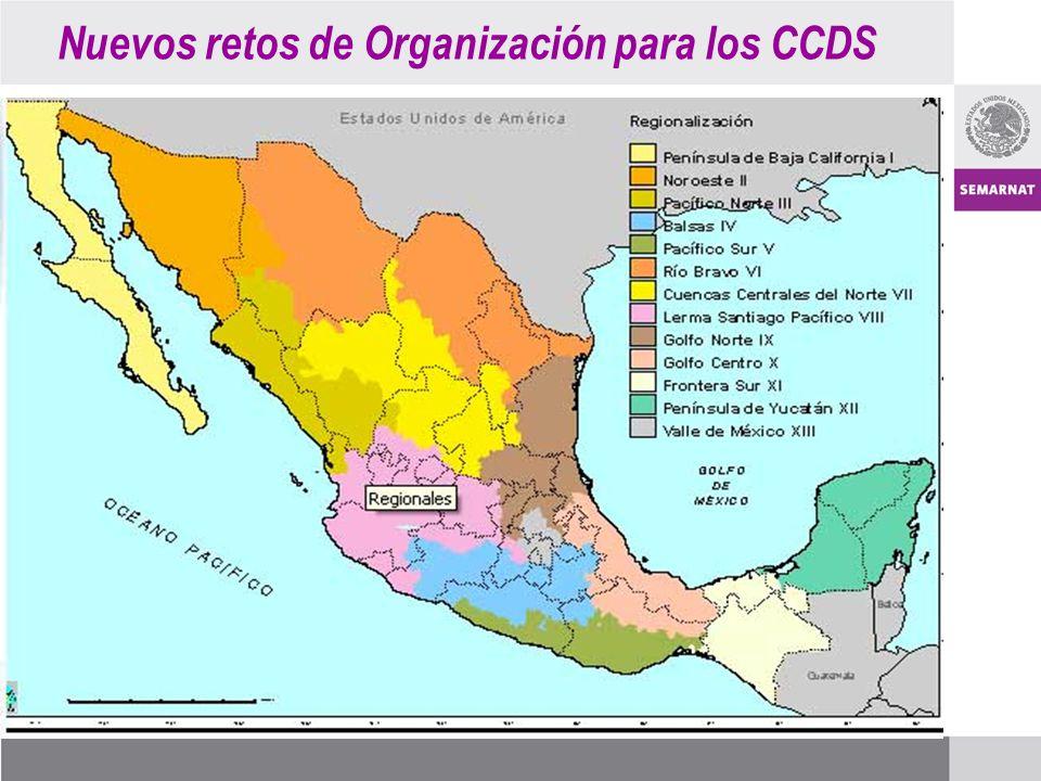 Nuevos retos de Organización para los CCDS