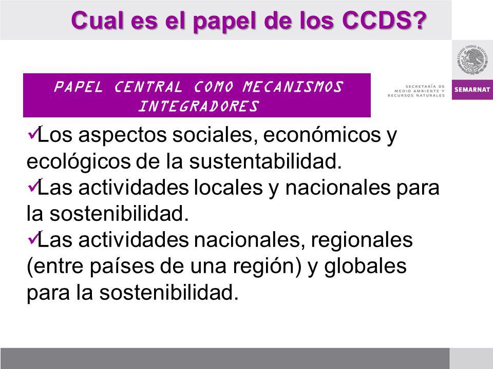 Cual es el papel de los CCDS