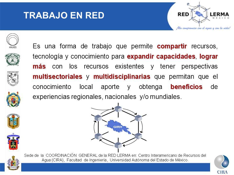 TRABAJO EN RED