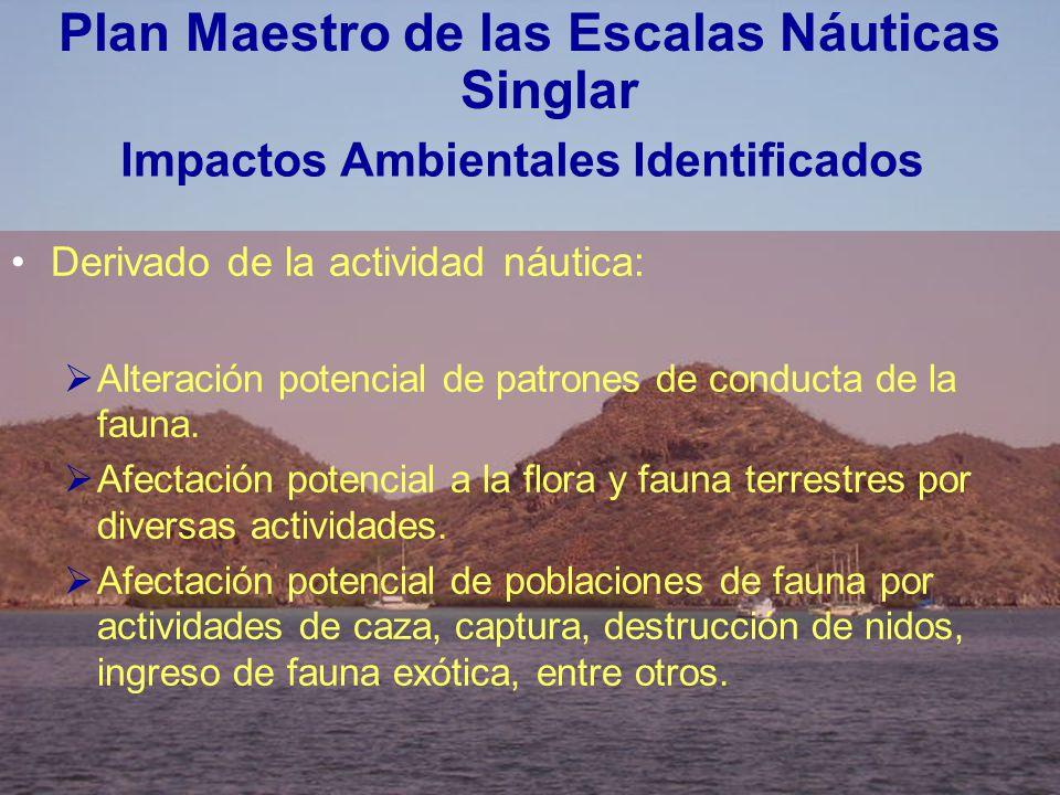 Impactos Ambientales Identificados
