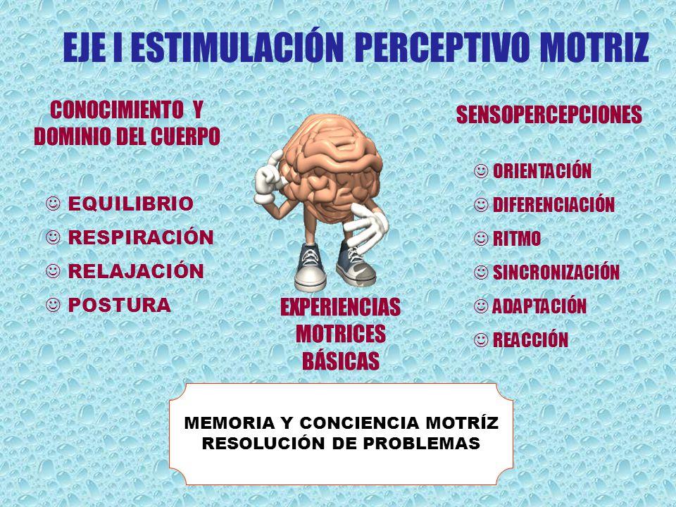 MEMORIA Y CONCIENCIA MOTRÍZ RESOLUCIÓN DE PROBLEMAS