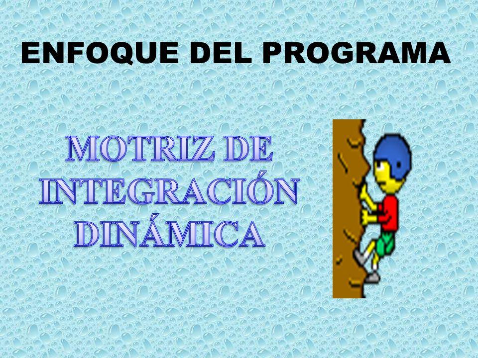 MOTRIZ DE INTEGRACIÓN DINÁMICA