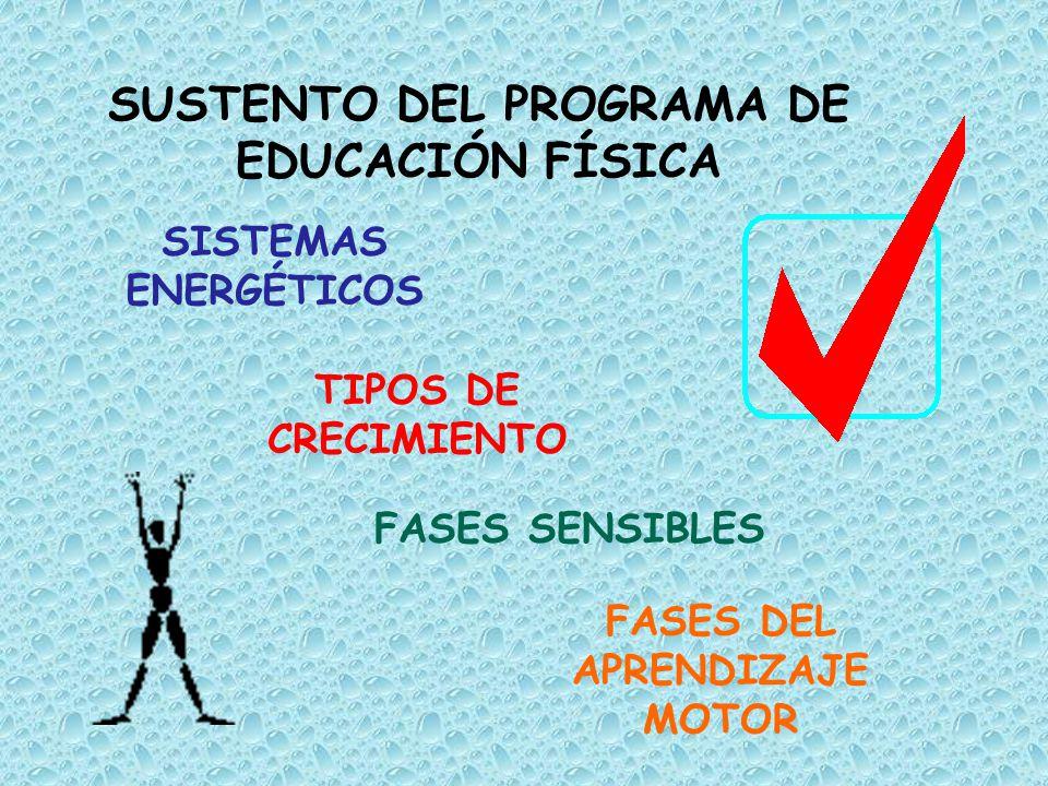 SUSTENTO DEL PROGRAMA DE EDUCACIÓN FÍSICA FASES DEL APRENDIZAJE MOTOR