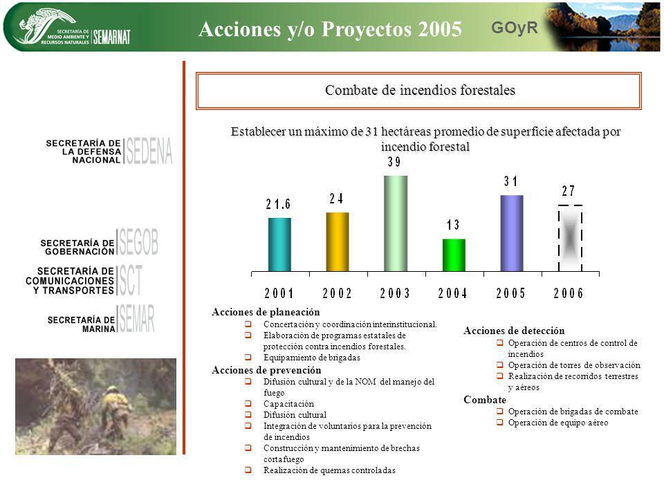 Acciones y/o Proyectos 2005