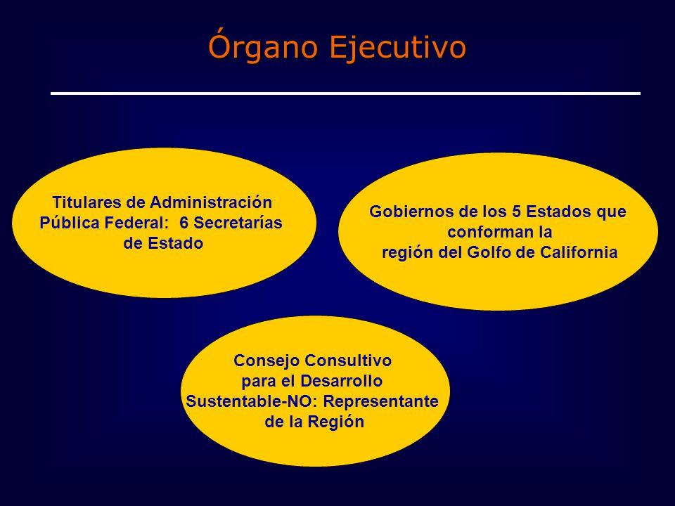 Órgano Ejecutivo Titulares de Administración