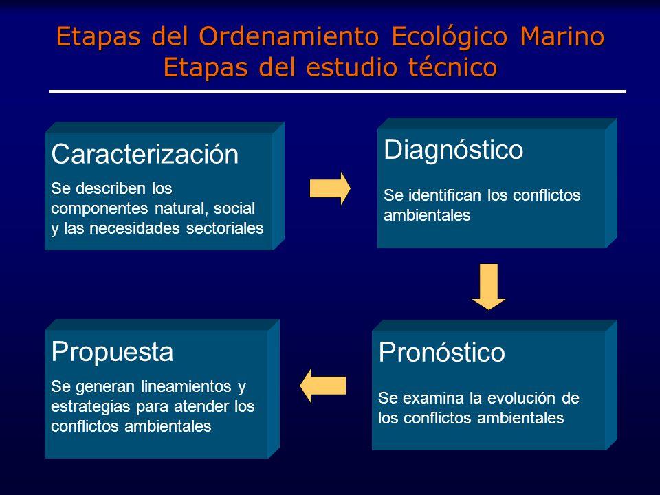 Etapas del Ordenamiento Ecológico Marino Etapas del estudio técnico