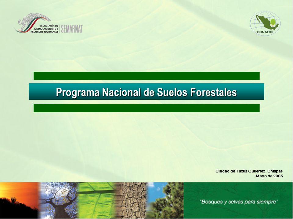 Programa Nacional de Suelos Forestales