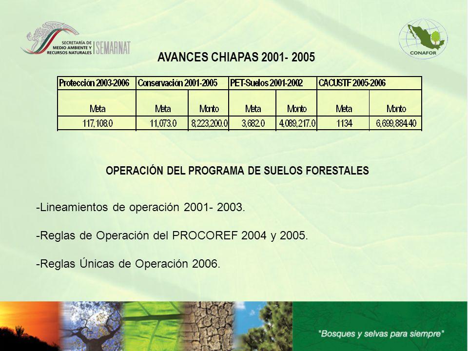 AVANCES CHIAPAS 2001- 2005 OPERACIÓN DEL PROGRAMA DE SUELOS FORESTALES