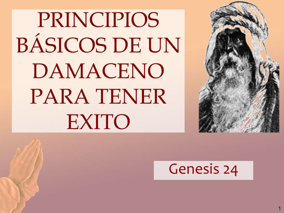 PRINCIPIOS BÁSICOS DE UN DAMACENO PARA TENER EXITO