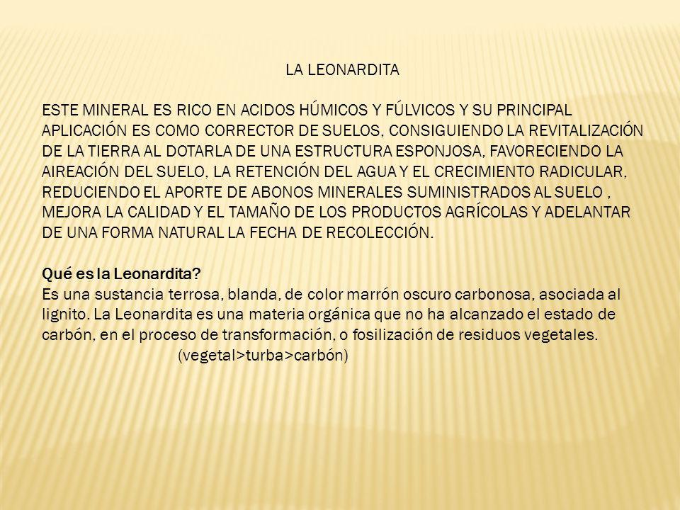 LA LEONARDITA