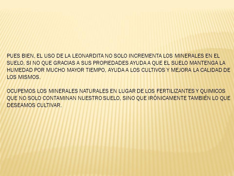 PUES BIEN, EL USO DE LA LEONARDITA NO SOLO INCREMENTA LOS MINERALES EN EL SUELO, SI NO QUE GRACIAS A SUS PROPIEDADES AYUDA A QUE EL SUELO MANTENGA LA HUMEDAD POR MUCHO MAYOR TIEMPO, AYUDA A LOS CULTIVOS Y MEJORA LA CALIDAD DE LOS MISMOS.