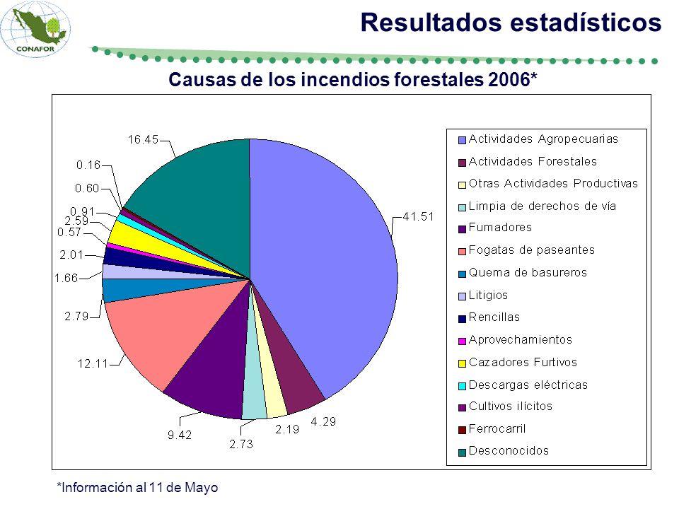 Resultados estadísticos Causas de los incendios forestales 2006*