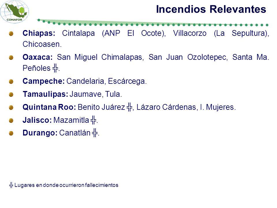 Incendios Relevantes Chiapas: Cintalapa (ANP El Ocote), Villacorzo (La Sepultura), Chicoasen.