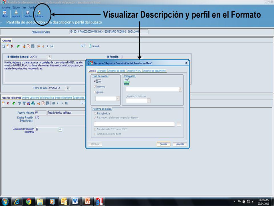 Visualizar Descripción y perfil en el Formato