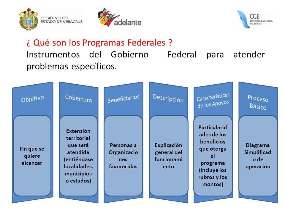 ¿ Qué son los Programas Federales