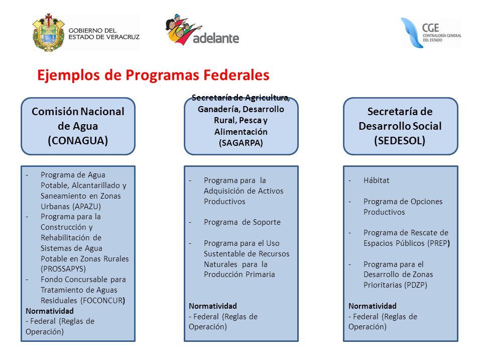 Ejemplos de Programas Federales