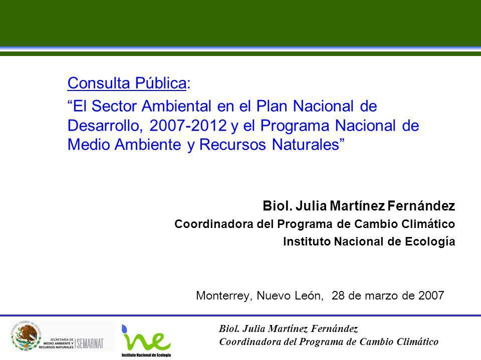 Consulta Pública: El Sector Ambiental en el Plan Nacional de Desarrollo, 2007-2012 y el Programa Nacional de Medio Ambiente y Recursos Naturales