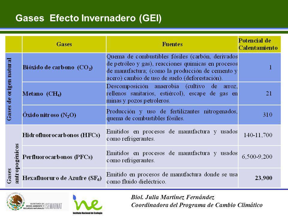 Gases Efecto Invernadero (GEI)