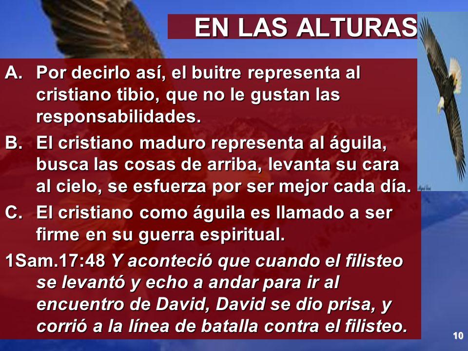 EN LAS ALTURASPor decirlo así, el buitre representa al cristiano tibio, que no le gustan las responsabilidades.