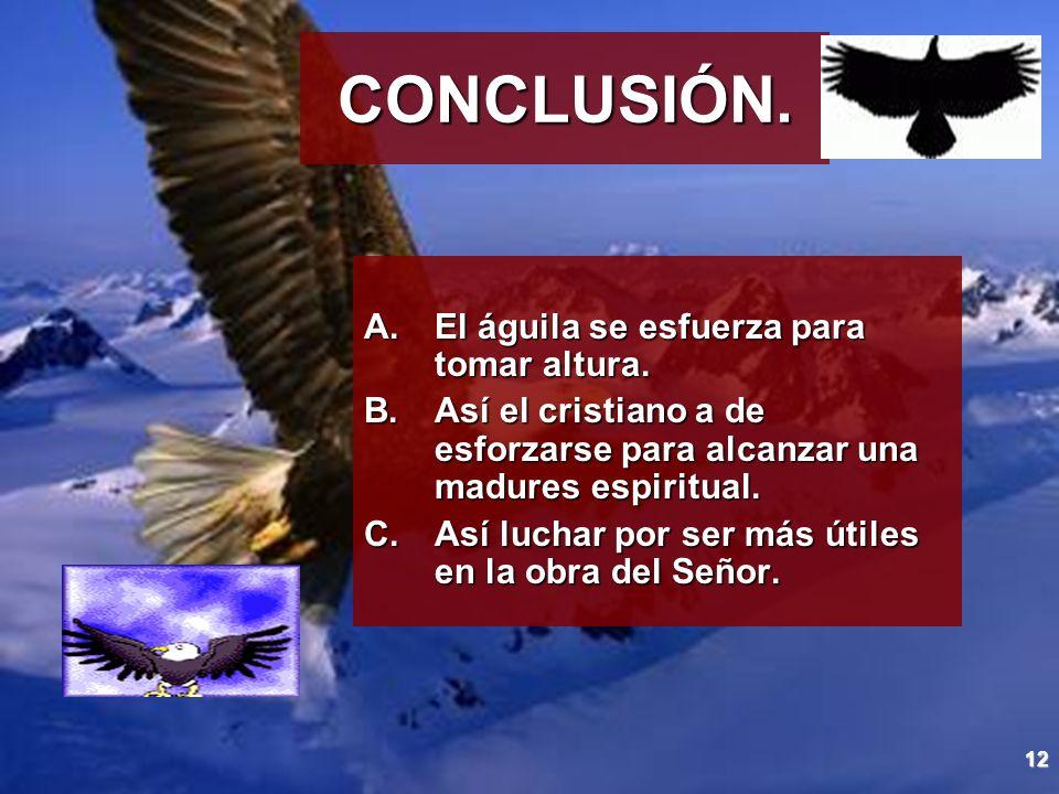 CONCLUSIÓN. El águila se esfuerza para tomar altura.