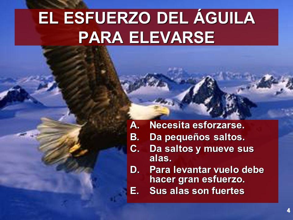 EL ESFUERZO DEL ÁGUILA PARA ELEVARSE