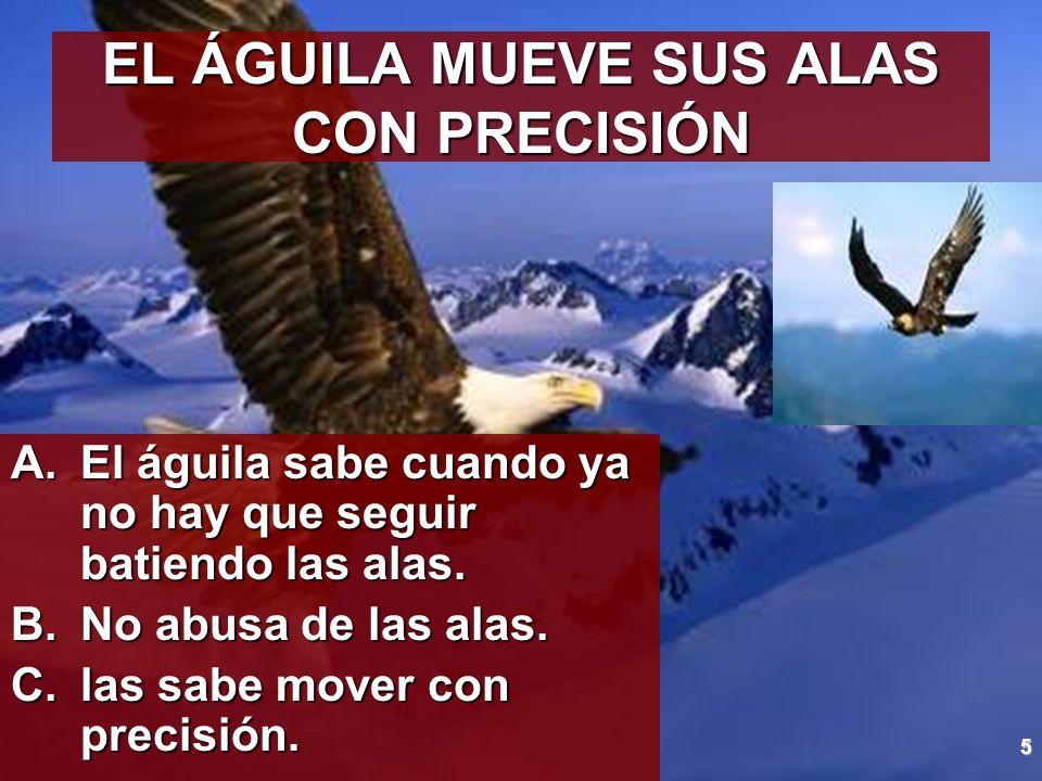 EL ÁGUILA MUEVE SUS ALAS CON PRECISIÓN