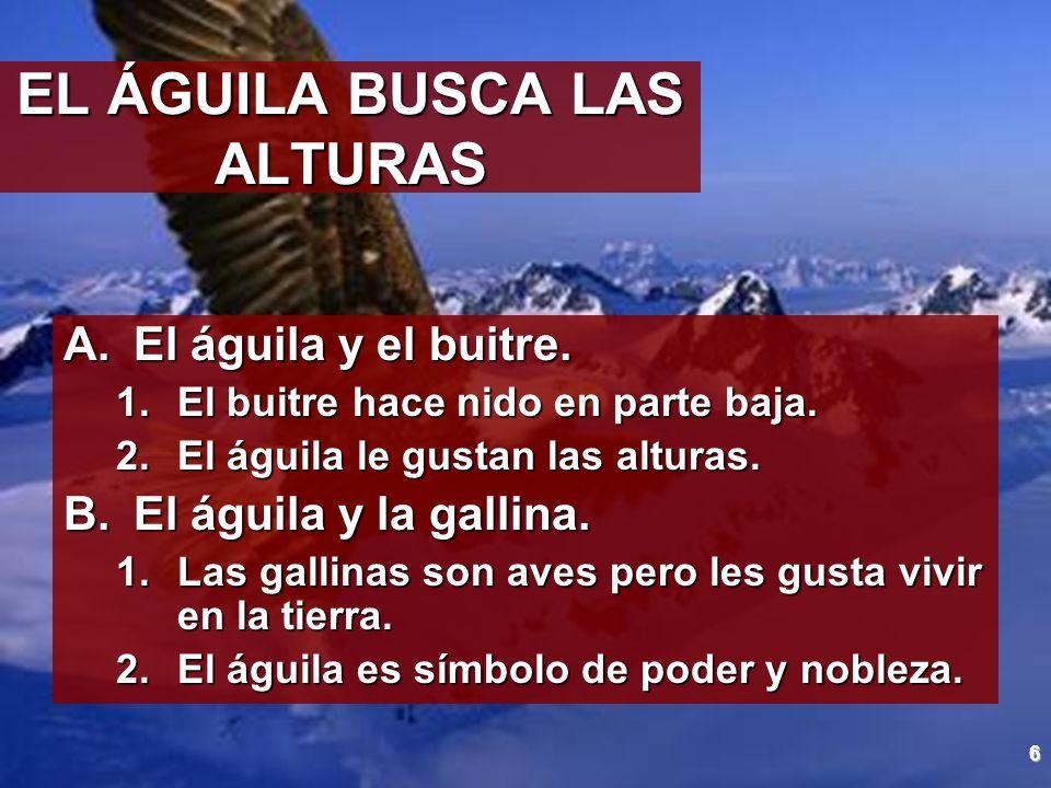 EL ÁGUILA BUSCA LAS ALTURAS