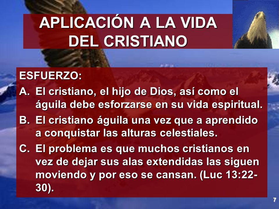 APLICACIÓN A LA VIDA DEL CRISTIANO