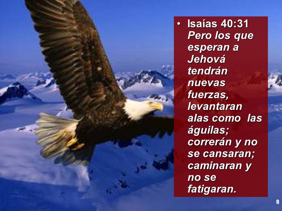 Isaías 40:31 Pero los que esperan a Jehová tendrán nuevas fuerzas, levantaran alas como las águilas; correrán y no se cansaran; caminaran y no se fatigaran.