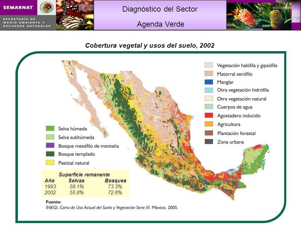 Cobertura vegetal y usos del suelo, 2002