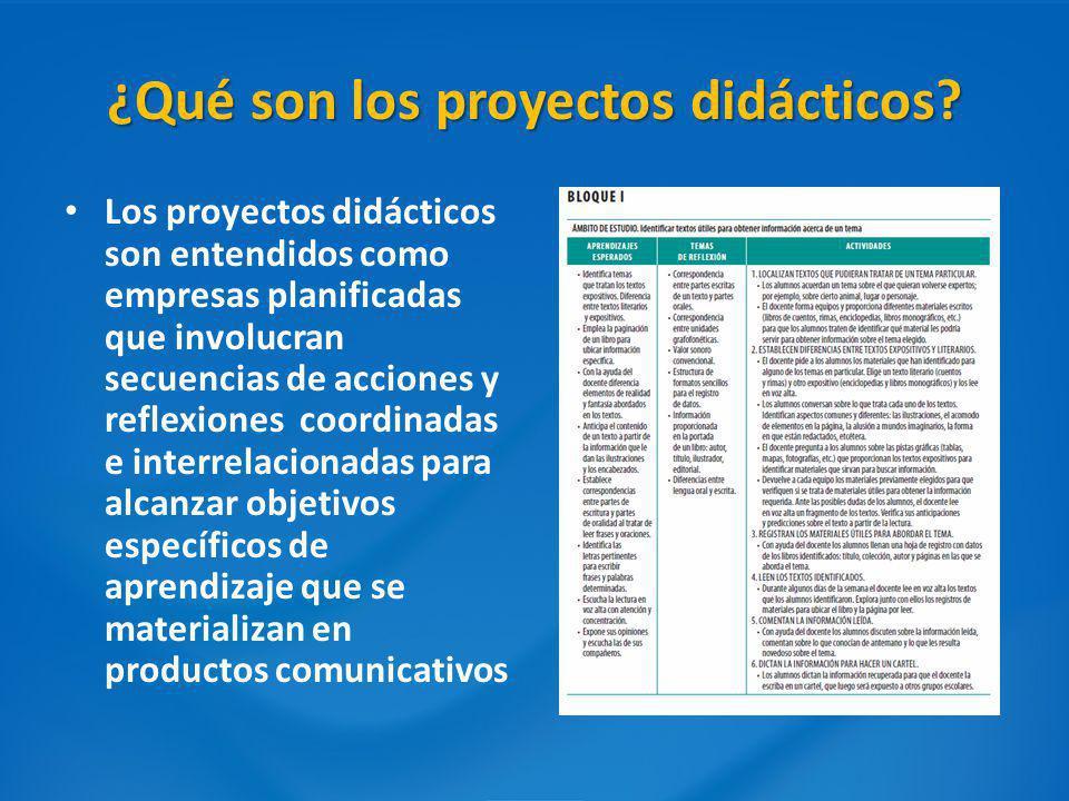 ¿Qué son los proyectos didácticos