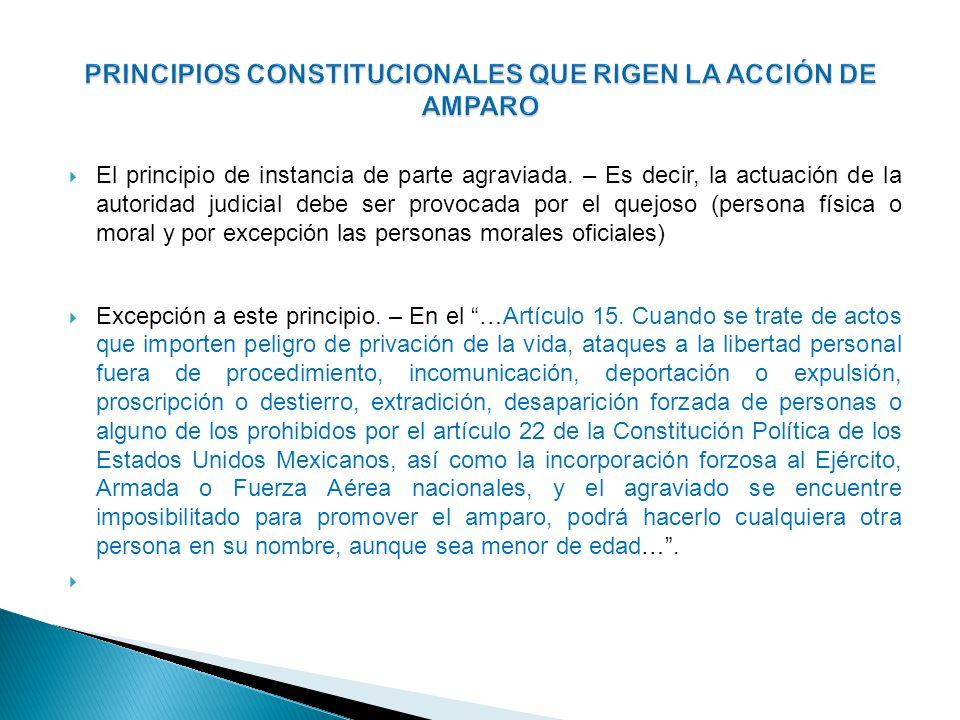 PRINCIPIOS CONSTITUCIONALES QUE RIGEN LA ACCIÓN DE AMPARO
