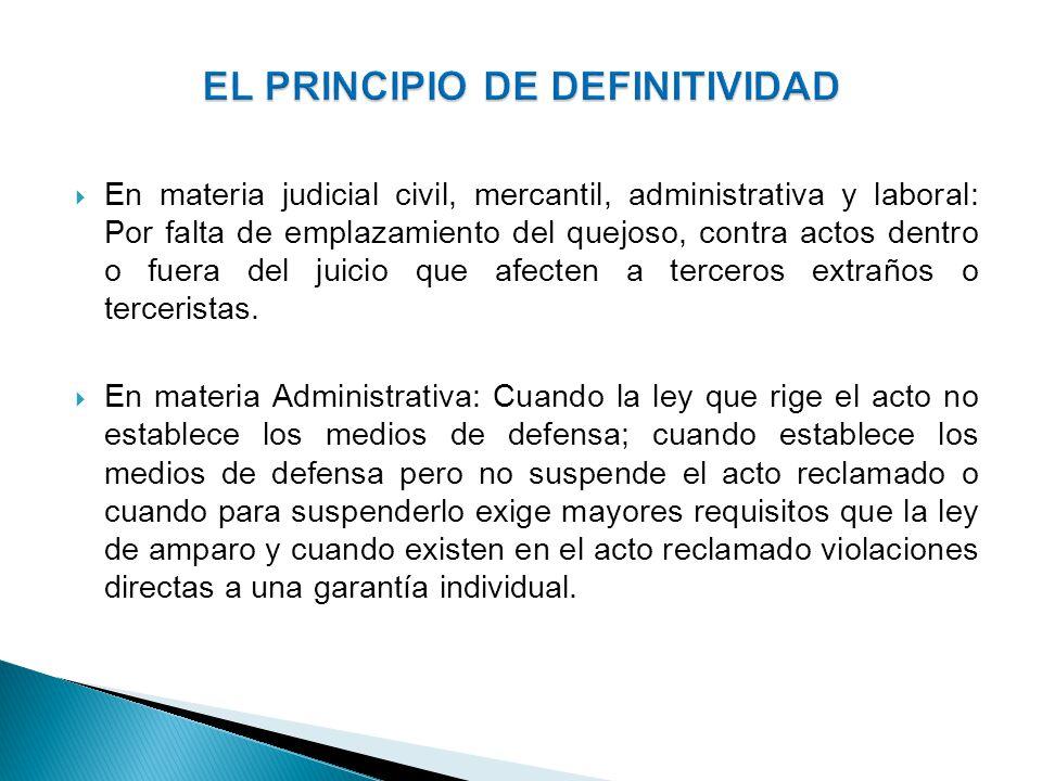 EL PRINCIPIO DE DEFINITIVIDAD
