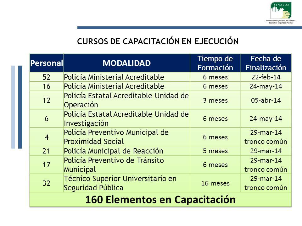 CURSOS DE CAPACITACIÓN EN EJECUCIÓN 160 Elementos en Capacitación