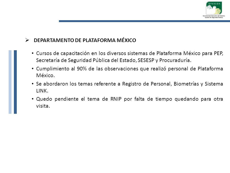 DEPARTAMENTO DE PLATAFORMA MÉXICO