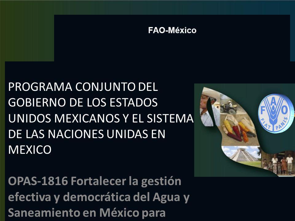 FAO-México PROGRAMA CONJUNTO DEL GOBIERNO DE LOS ESTADOS UNIDOS MEXICANOS Y EL SISTEMA DE LAS NACIONES UNIDAS EN MEXICO.