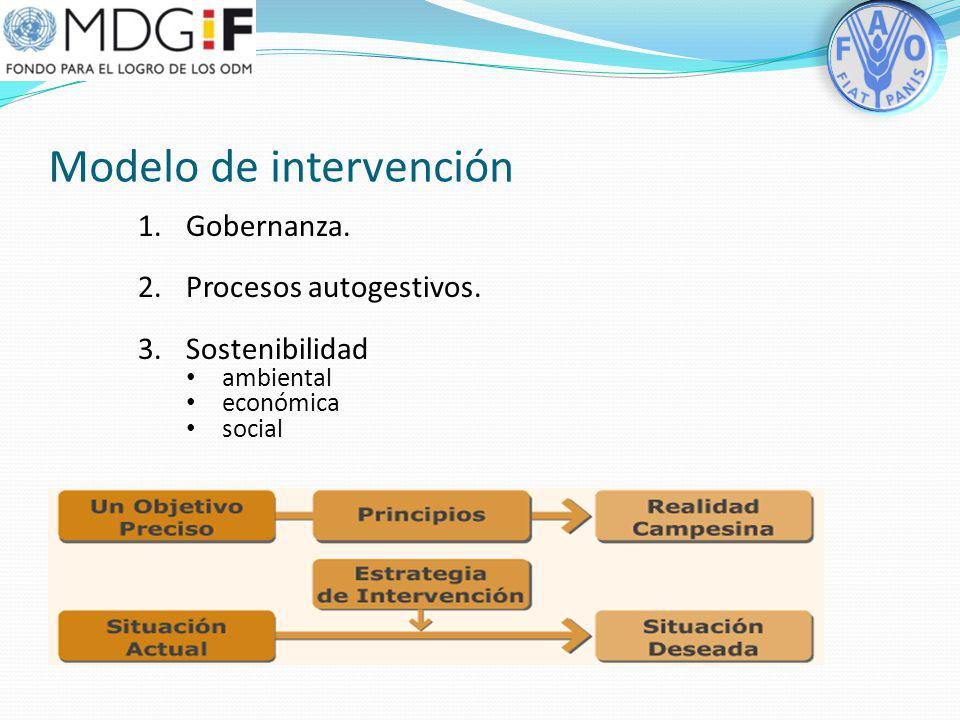 Modelo de intervención