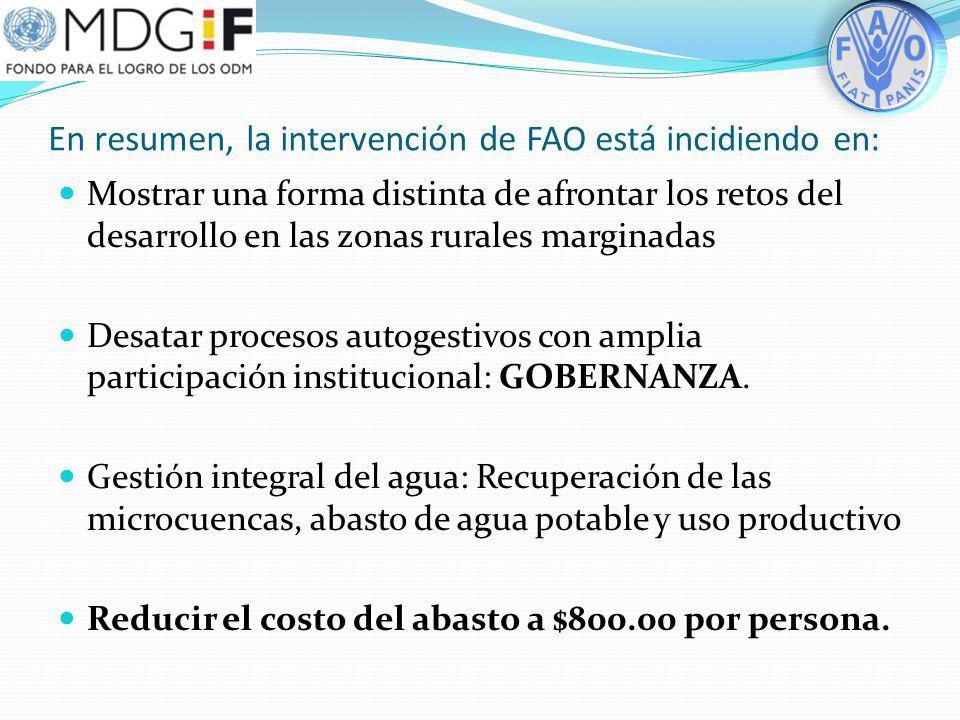 En resumen, la intervención de FAO está incidiendo en: