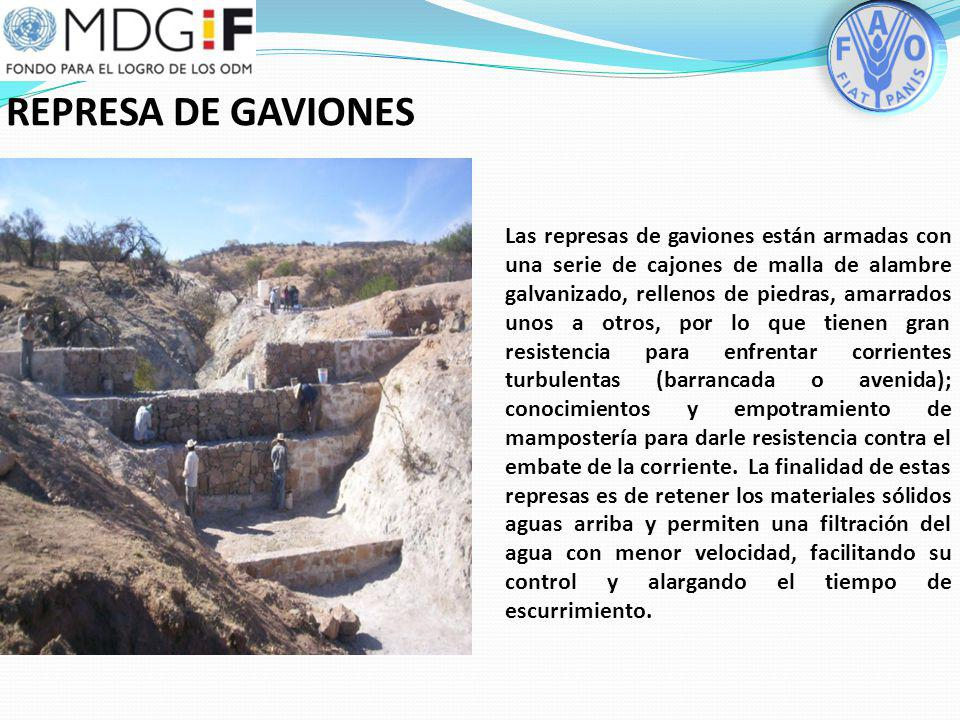 REPRESA DE GAVIONES