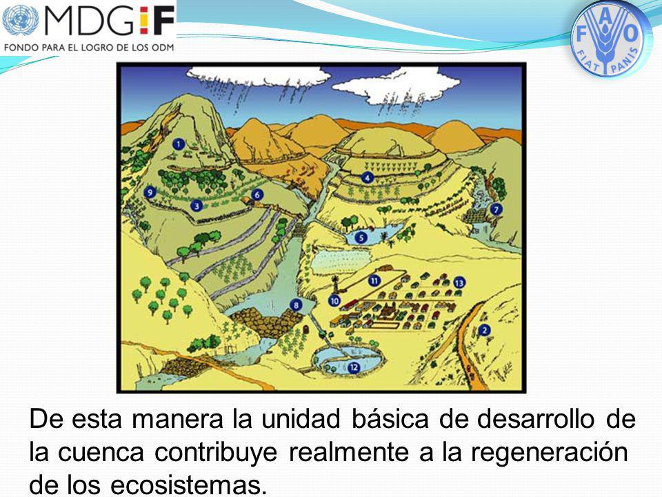 De esta manera la unidad básica de desarrollo de la cuenca contribuye realmente a la regeneración de los ecosistemas.