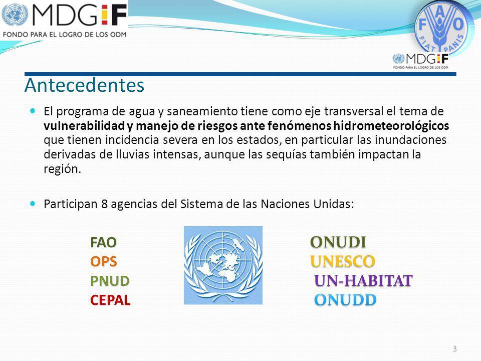 Antecedentes FAO OPS PNUD CEPAL ONUDI UNESCO UN-HABITAT ONUDD