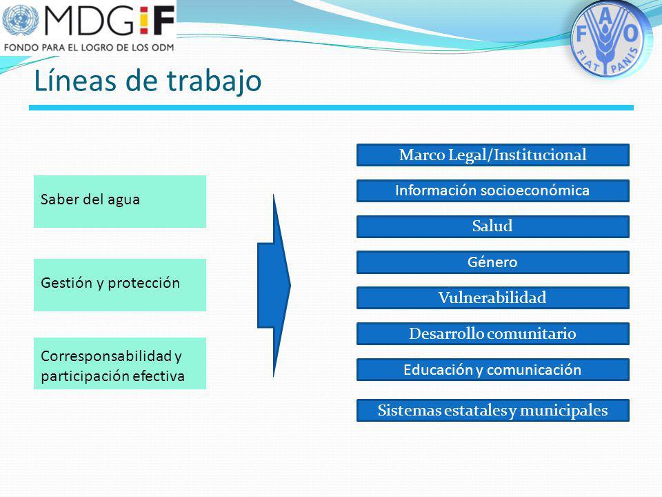 Líneas de trabajo Marco Legal/Institucional Información socioeconómica