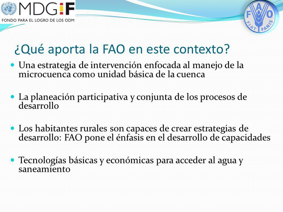 ¿Qué aporta la FAO en este contexto