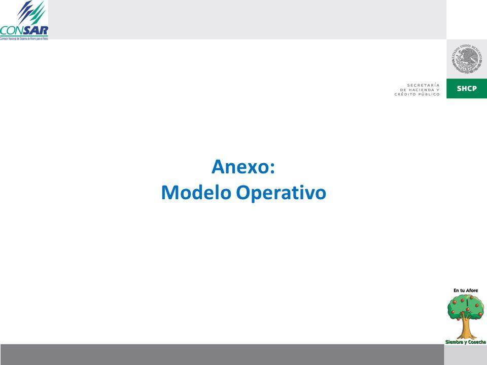Anexo: Modelo Operativo
