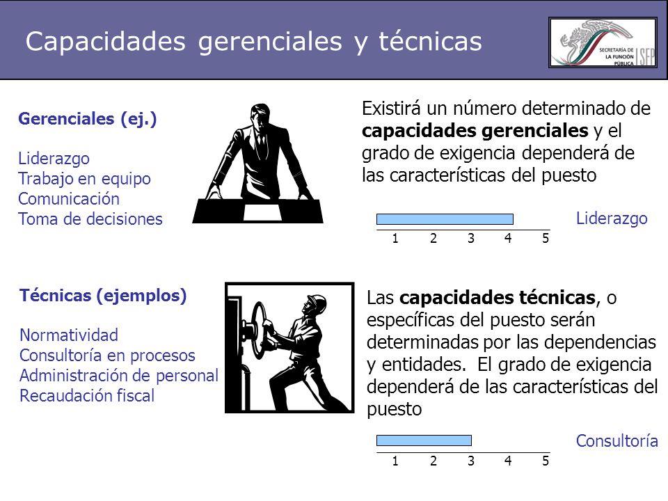 Capacidades gerenciales y técnicas