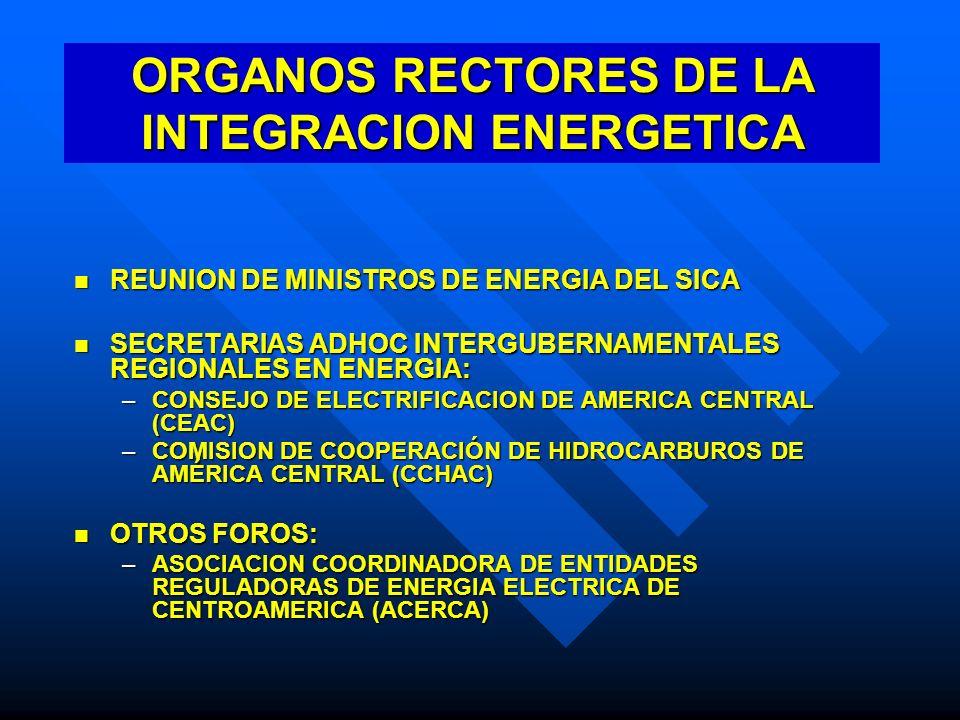 ORGANOS RECTORES DE LA INTEGRACION ENERGETICA