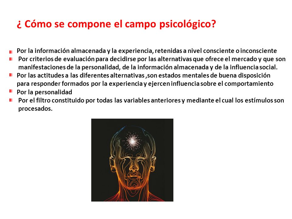 ¿ Cómo se compone el campo psicológico