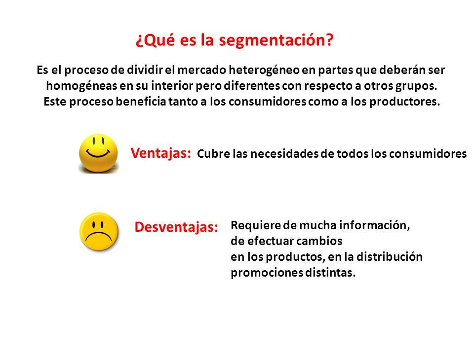 ¿Qué es la segmentación